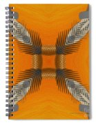 Inner Chi Spiral Notebook
