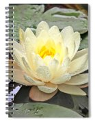 Inner Glow - White Water Lily Spiral Notebook