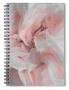 Inner Light Spiral Notebook