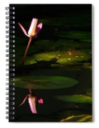 Inner Peace Spiral Notebook