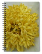 Inner Section Of A White Peony Spiral Notebook