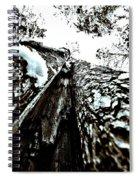 Inner View Spiral Notebook