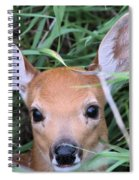 Innocence Spiral Notebook