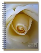 Innocence White Rose 5 Spiral Notebook