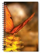 Insect - Butterfly - Just A Bit Of Orange  Spiral Notebook
