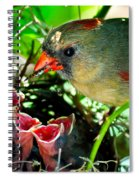 Insect For Diner Agaain Spiral Notebook
