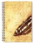 Insect Study Number 66 Spiral Notebook