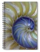 Inside A Nautilus Shell Spiral Notebook