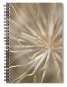Inside Spiral Notebook