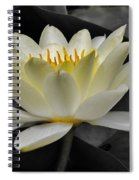 Inside Glow Spiral Notebook