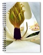 Inside Magnolia Spiral Notebook