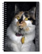 Intense Cleo Spiral Notebook