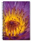 Intense...   # Spiral Notebook