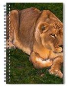 Intensity - Paint Spiral Notebook