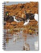 Inter-species Meeting Place Spiral Notebook
