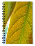 Interesting Leaves - Digital Painting Effect Spiral Notebook
