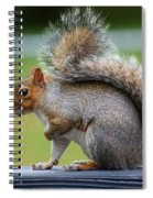 Interesting Tail Spiral Notebook