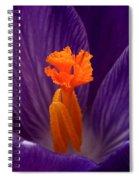 Interior Design Spiral Notebook