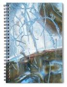 Interior Issues  Spiral Notebook