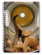 Interiors Of A Museum, National Museum Spiral Notebook