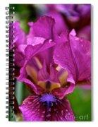 Internal Affair Spiral Notebook
