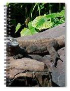 Interupted Sunbathing Spiral Notebook