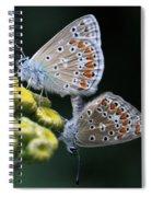Intimacy Spiral Notebook