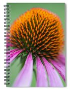 Intimate View Spiral Notebook