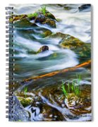 Intimate With River Spiral Notebook