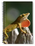 Intimidated Anole Spiral Notebook