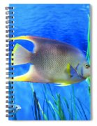 Into Blue - Tropical Fish By Sharon Cummings Spiral Notebook