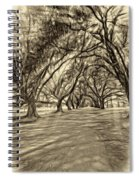 Into The Deep South - Paint 2 Sepia Spiral Notebook