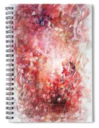 Into The Enchantment Spiral Notebook