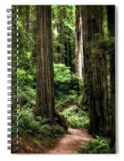 Into The Magical Forest Spiral Notebook