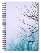 Into The Mist Spiral Notebook