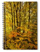Into The Woods We Go  Spiral Notebook