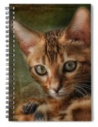 Introducing Leo Spiral Notebook