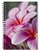 intoxicated by Love Spiral Notebook