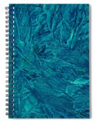 Intricate Blue Spiral Notebook