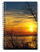Intricate Details Spiral Notebook
