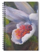 Inviting- Oil Spiral Notebook