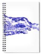 Involutions - Blowing Spray Spiral Notebook