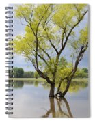 Iowa Flood Plains Spiral Notebook