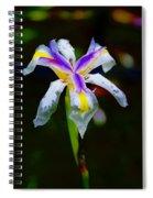Iris 2012 Spiral Notebook