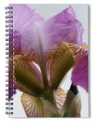 Iris 28 Reaching For The Sky Spiral Notebook
