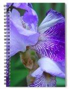 Iris 30 Spiral Notebook