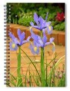 Iris Along The Walk Spiral Notebook