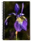 Iris Baroque Spiral Notebook