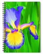 Iris Blossom Spiral Notebook