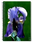 Iris Blues Spiral Notebook